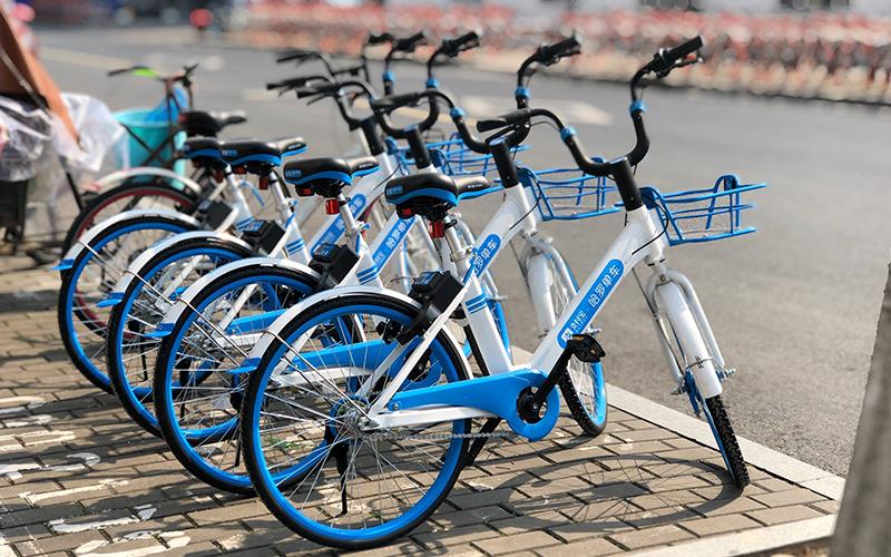 <span>Shared bicycle</span>